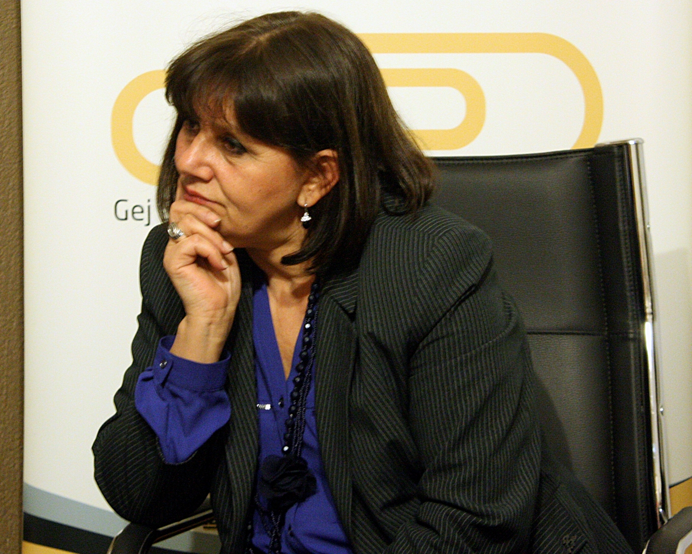 Nevena Petrušić, Commissioner for Protection of Equality, guest of the GSA at the meeting with GSA members